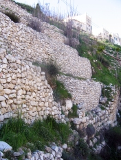 347 - Walls of City of David