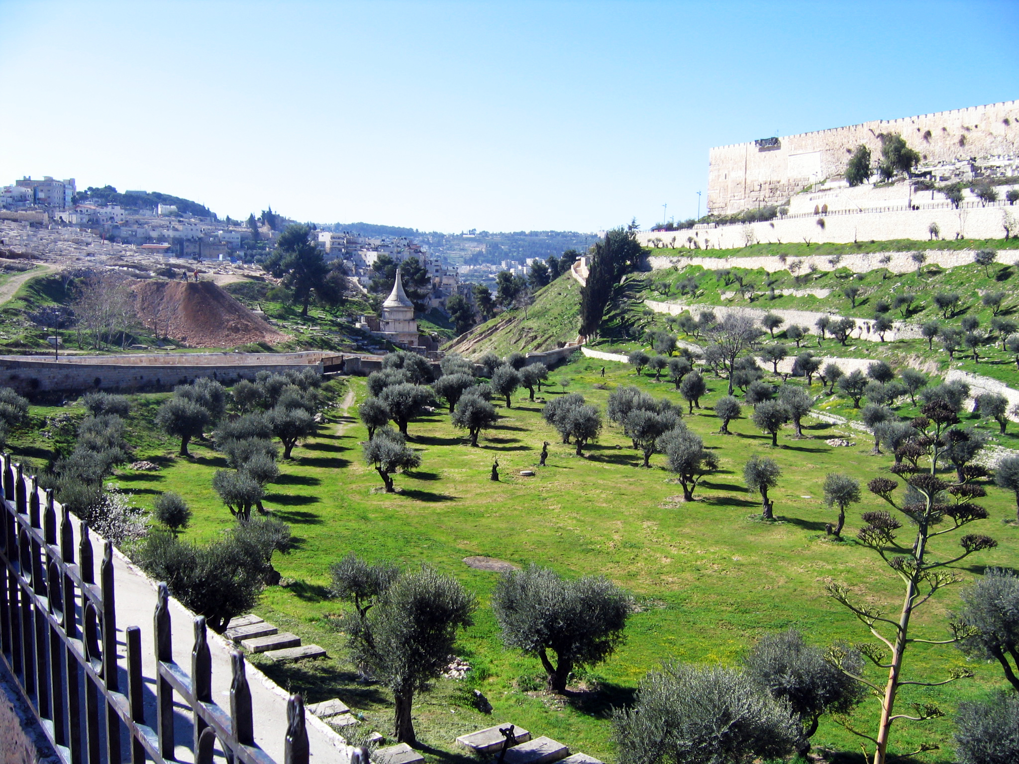 Garden Of Gethsemane Looking For The Blessed Hope